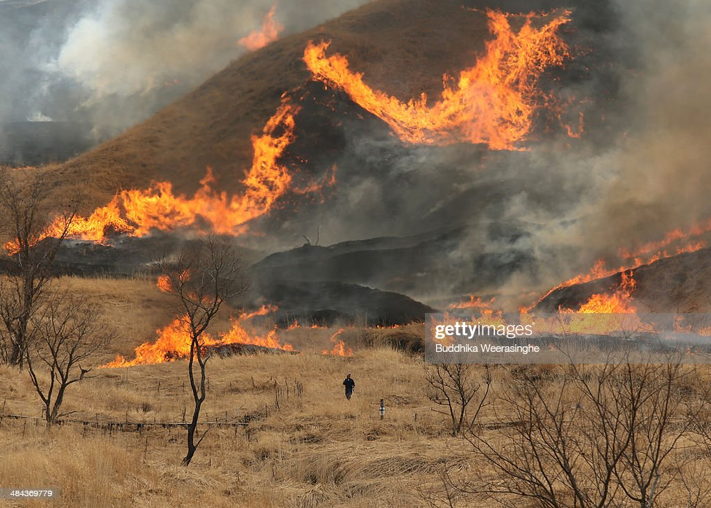 A controlled fire burns Susuki or Chinese sliver grass at Tonomine Highland on April 12, 2014 in Kamikawa, Hyogo, Japan. Tonomine Highland, known for its susuki grass field of about 90 hectares, is burnt every year to get rid of dead grass for better growth of new buds, marking the arrival of spring.