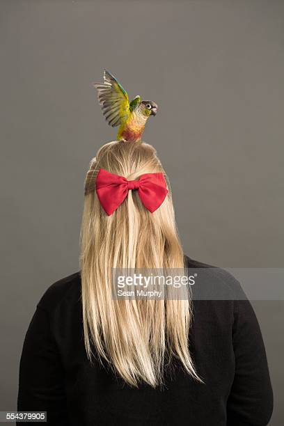 Conure Posing on Back of Girl's Head