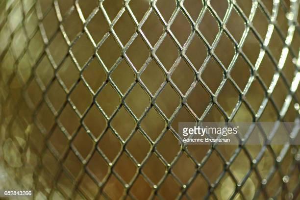 Convex Gold Wire Mesh, Close-Up