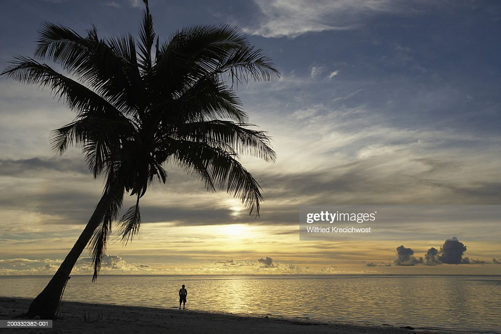 Cook Islands, Aitutaki, silhouette of man by palm tree, sunset : Stock Photo