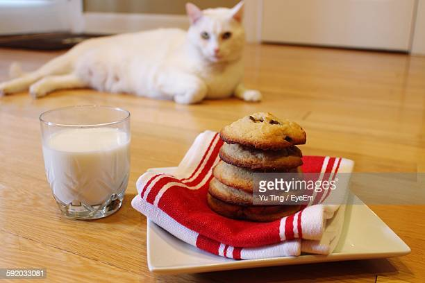 Cookies And Milk On Floor With Cat At Home