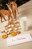 Cookies for Santa Claus