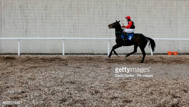 Coole Abbey Major and MrGBall make their way to post for the Llewellyn Humphreys Novicesacute Huntersacute Chase at Ffos Las Racecourse