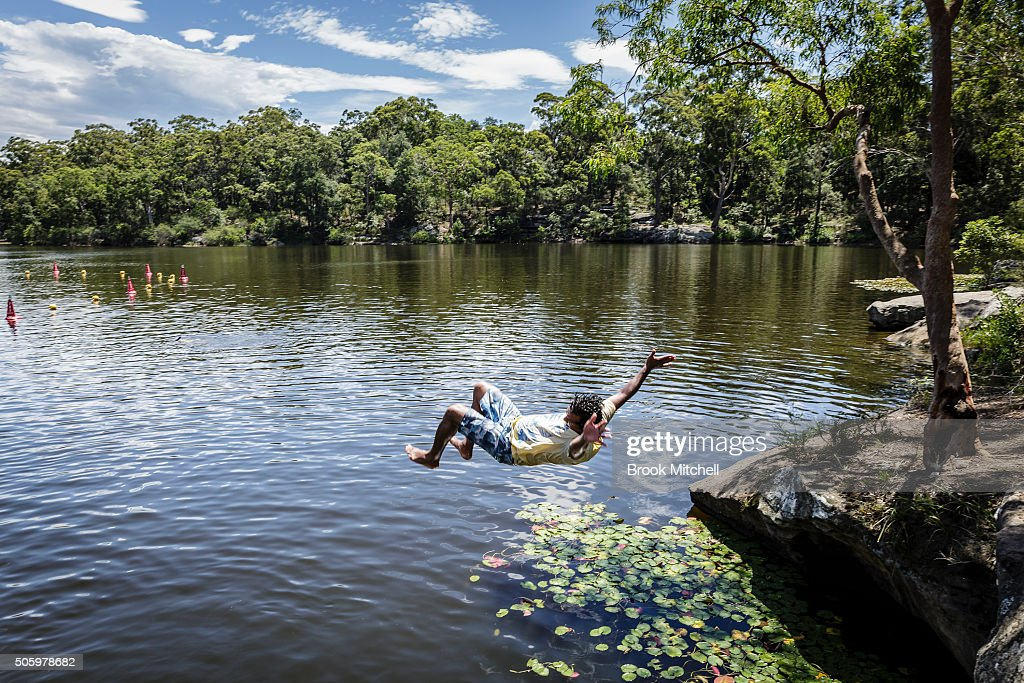 An african fishing eagle is pictured after catching a fish for Pool show sydney 2016