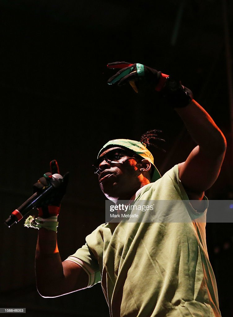 Coolio performs live on stage at The Falls Music and Arts Festival on December 31, 2012 in Lorne, Australia.