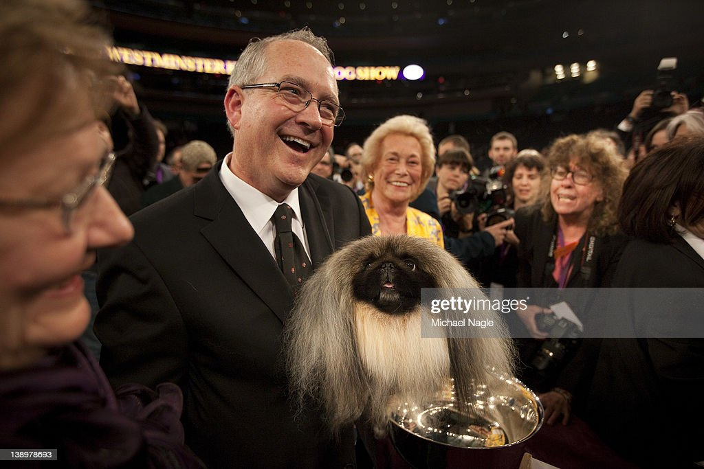 Co-owner and handler David Fitzpatrick holds Pekingese Malachy after winning Best in Show at the Westminster Kennel Club Dog Show on February 14, 2012 in New York City. The Westminster Kennel Club Dog Show was first held in 1877, is the second-longest continuously held sporting event in the U.S., second only to the Kentucky Derby.