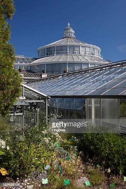 Copenhagen Botanical garden Denmark