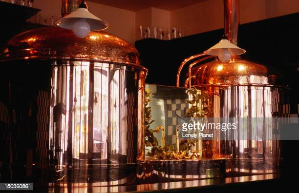 Copper beer vats at Pivovarsky dum micro-brewery pub.