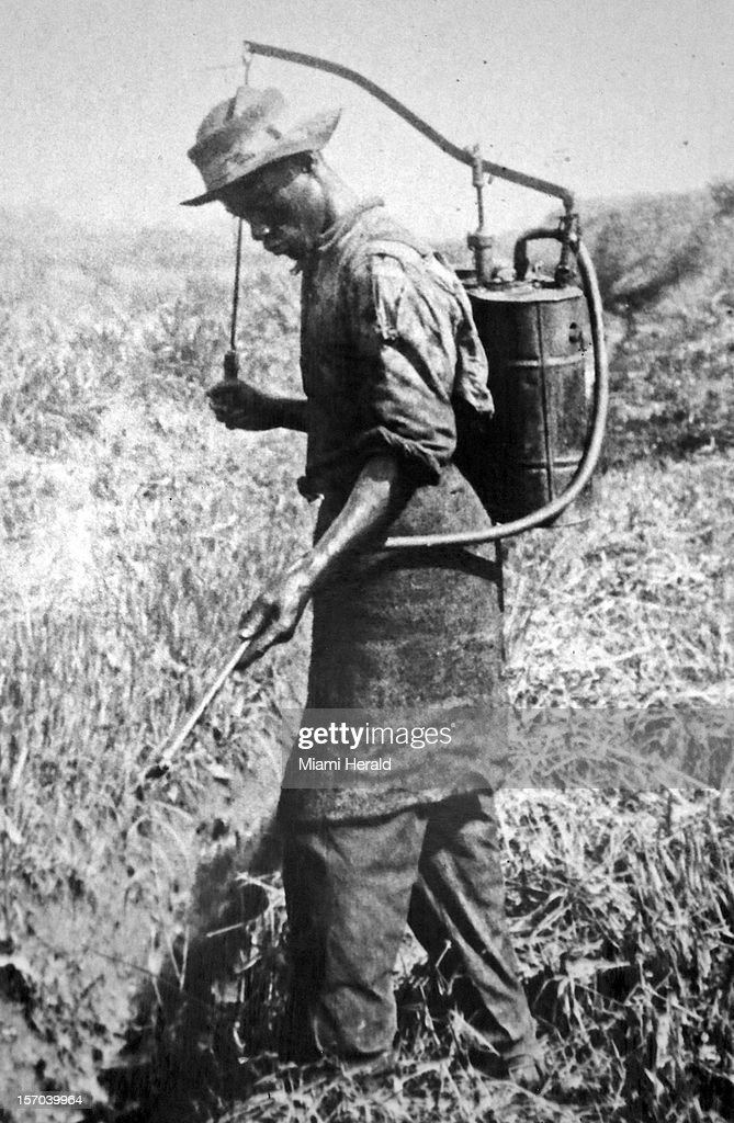 A copy of a photograph shows a worker fumigating the fields for mosquitoes during the construction of the original Panama Canal.