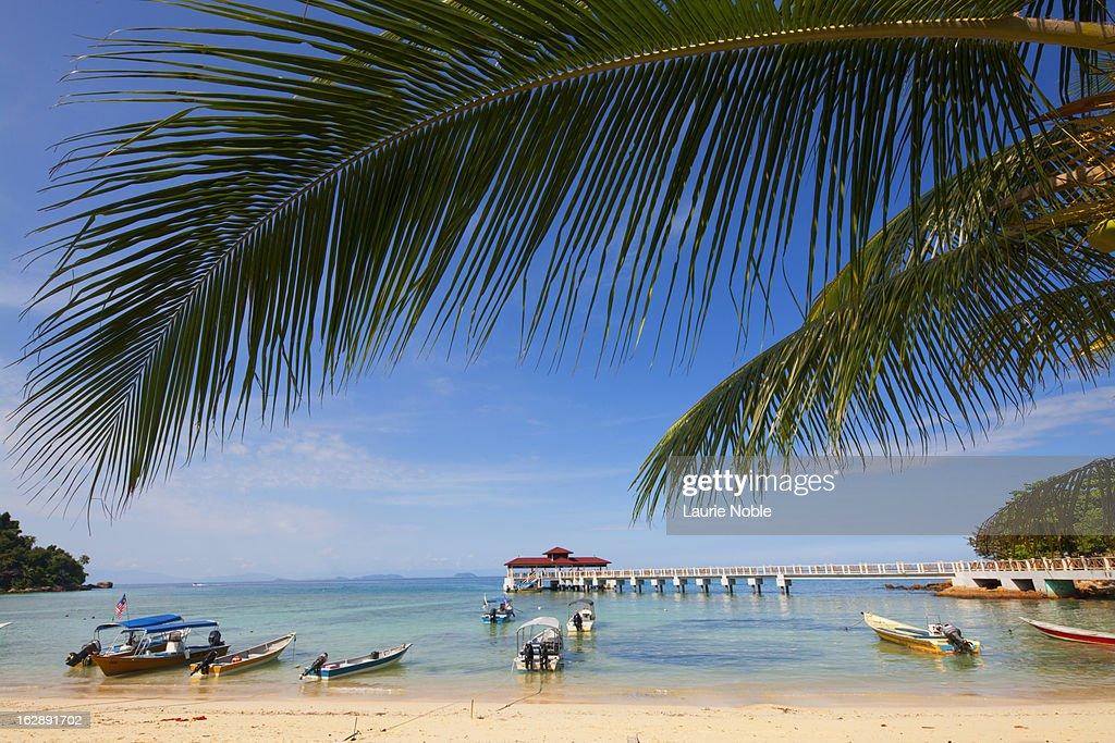Coral bay, Perhentian Islands
