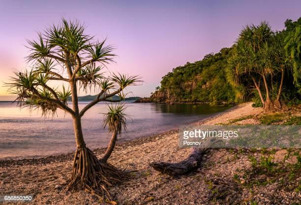 Coral Beach, Qwensland