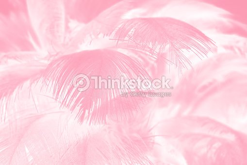 coral pink vintage color trends feather texture background ストック