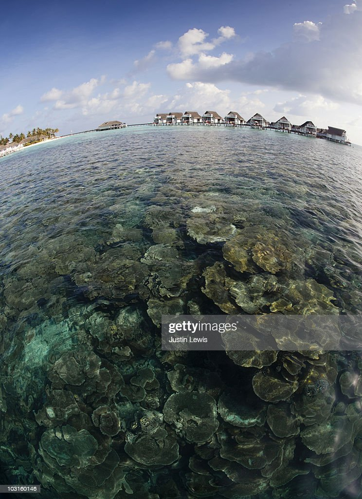 Coral reef and island resort in the Maldives : Stock Photo