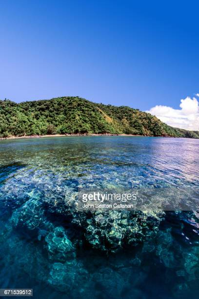Coral Reef on Catanduanes Island