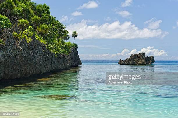 Coral Reef la isla Roatan Honduras