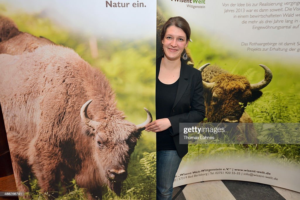 Coralie Herbst, scientific coordinator of the European bison project, pictured on May 5, 2014 at Bad Berleburg, Germany. The herd is a project of Wisent Welt Wittgenstein, a government-funded initiative which last year released the herd in an effort to restock the bison in the wild. European bison were once plentiful across Europe and Russia, though their numbers were decimated to near extinction by hunting and habitat encroachment.