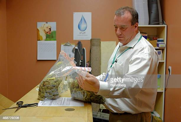 Corey Young a founder of courier service CannaRabbit LLC delivers bags of marijuana to a dispensary in in Louisville Colorado US on Friday March 27...