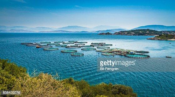 Corfu circles : Stock Photo