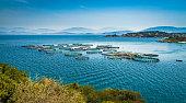 Fish farming in northern Corfu.