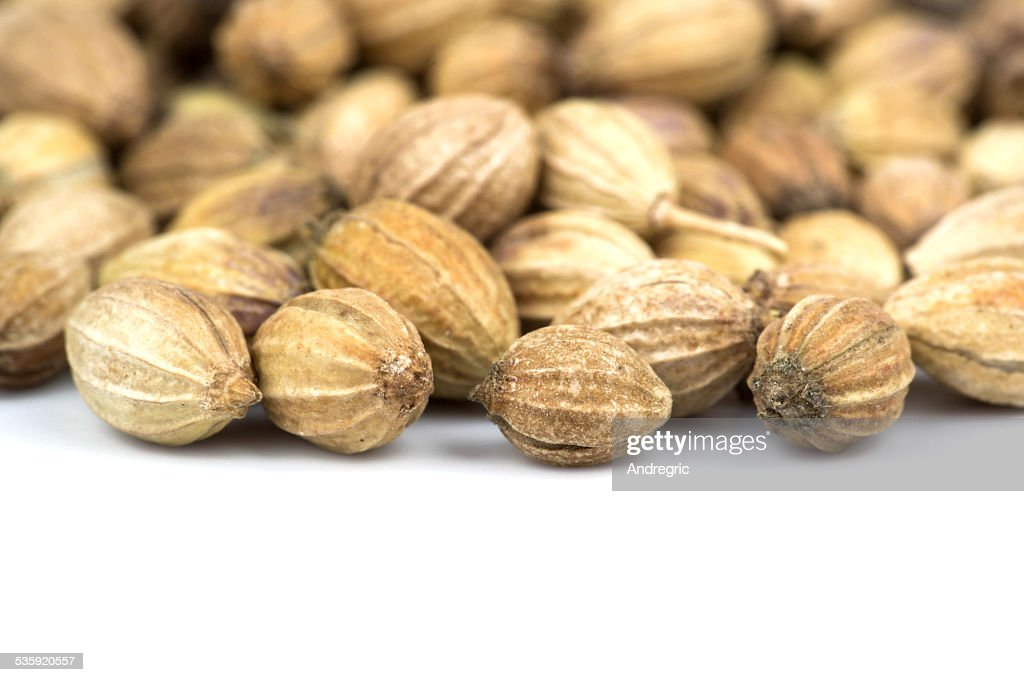 Coriander seeds : Stock Photo