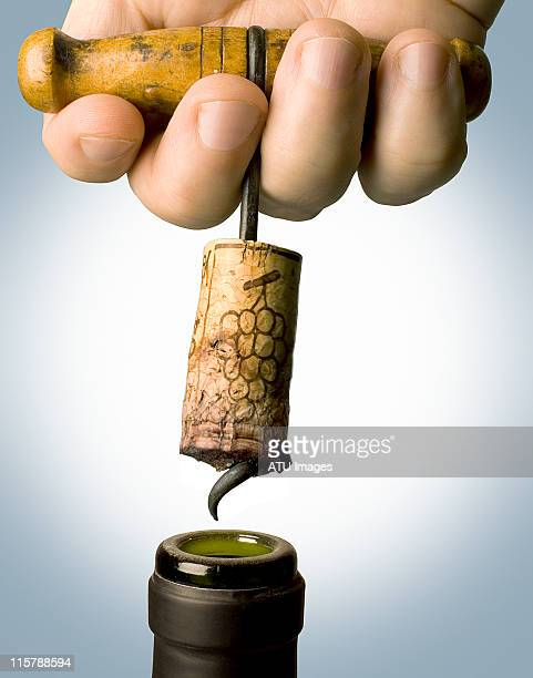 Corkscrew pulled from bottle