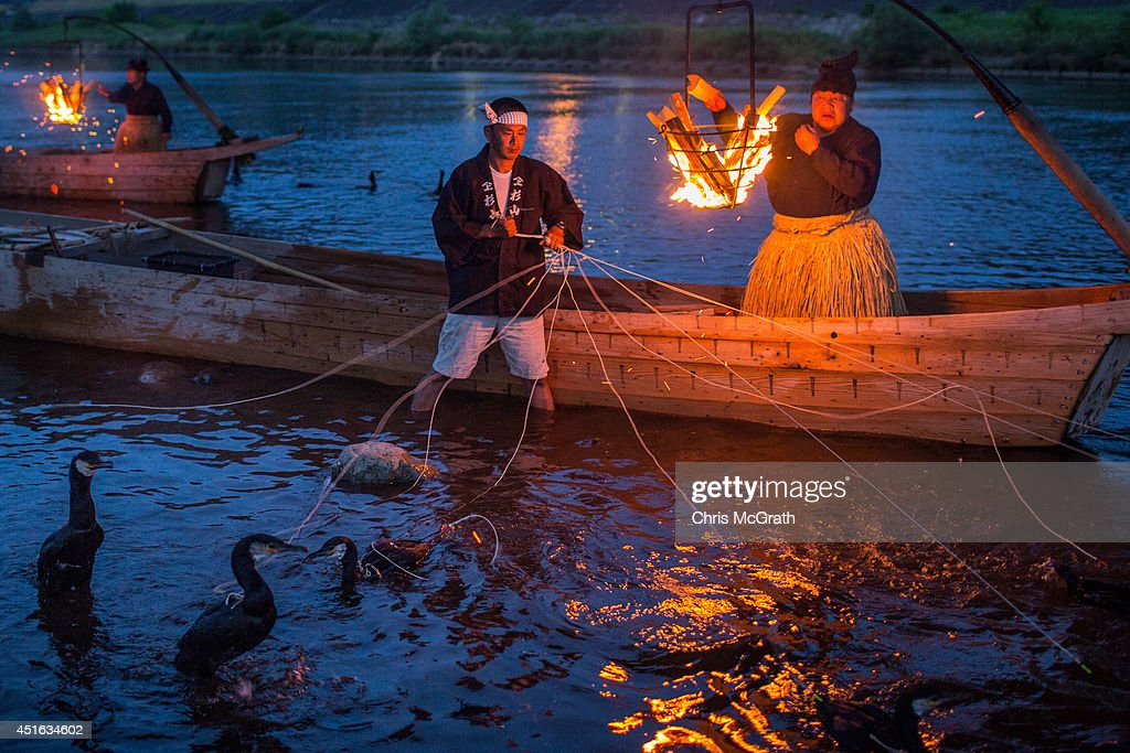 Cormorant masters and boatmen prepare sea cormorants for the nights 'Ukai' on July 2 2014 in Gifu Japan In this traditional fishing art 'ukai' a...
