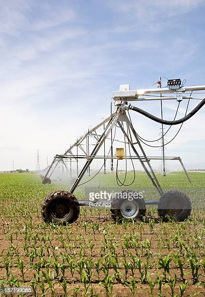 Corn Field Irrigation Equipment