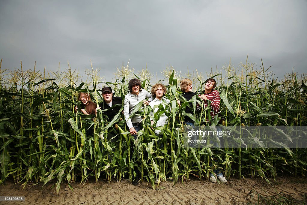 corn guys Corn definition is - a small hard particle : grain how to use corn in a sentence a small hard particle : grain a small hard seed —usually used in combination .