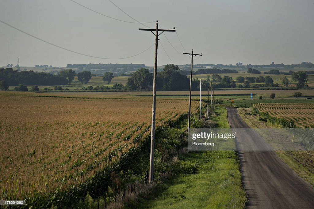 Corn grows in a field outside of Sheffield, Illinois, U.S., on Wednesday, Aug. 28, 2013. Wheat futures fell for a third straight day on signs of slack demand for inventories from the U.S., the worlds largest exporter, while soybeans dropped and corn gained. Photographer: Daniel Acker/Bloomberg via Getty Images
