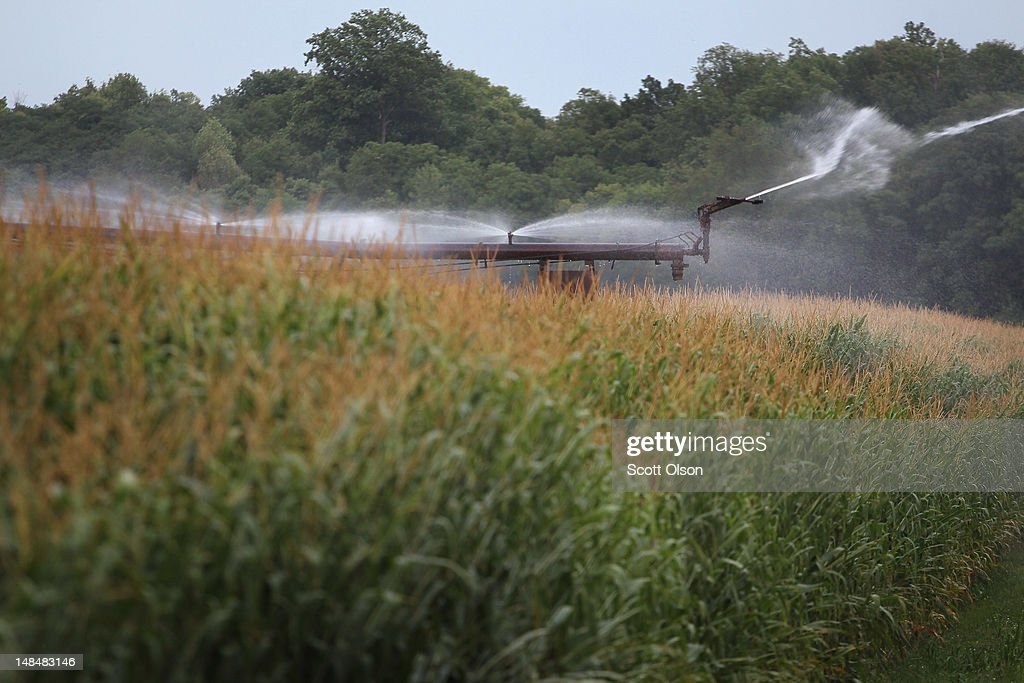 Corn is watered with an irrigation system on July 17, 2012 near Fritchton, Indiana. The corn and soybean belt in the middle of the nation is experiencing one of the worst droughts in more than five decades. Indiana was the nation's fourth largest corn producer in 2011.
