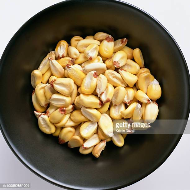 Corn kernels in bowl, directly above, studio shot