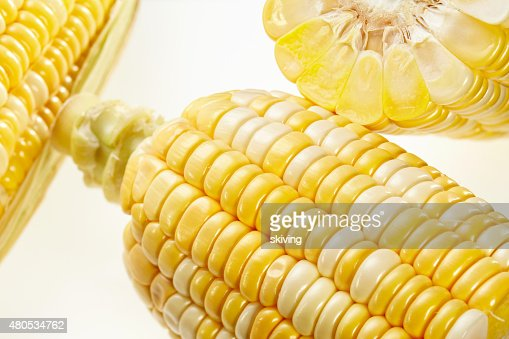 Corn : Stock Photo
