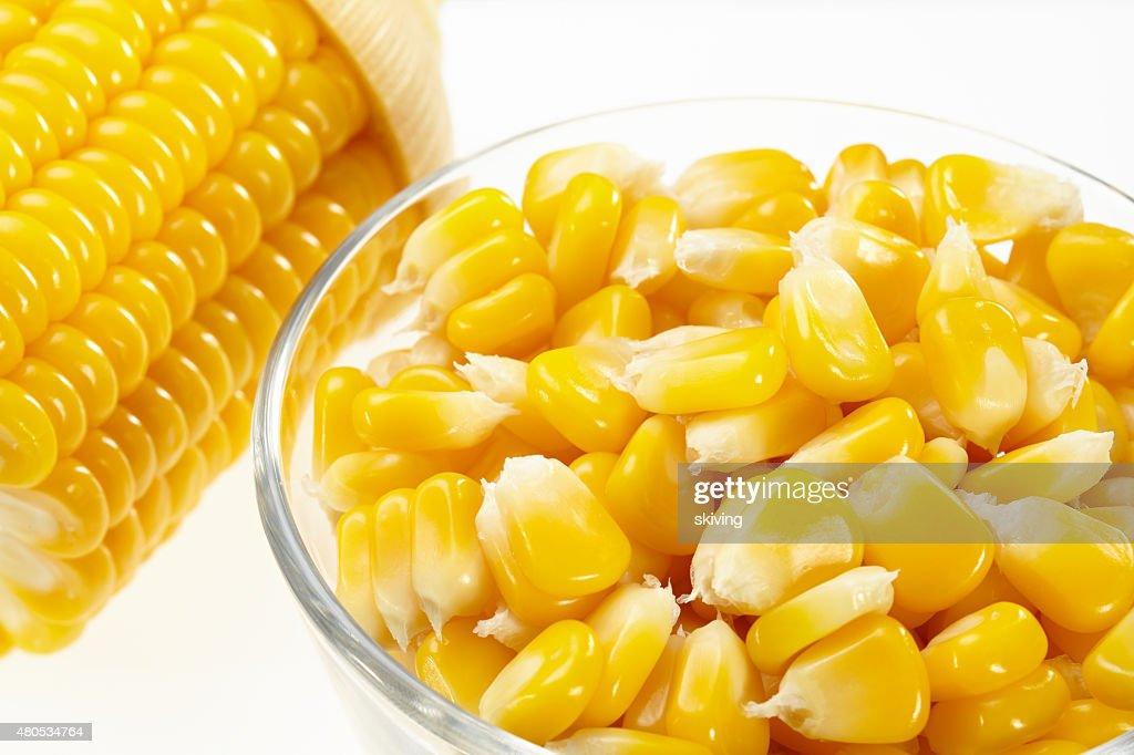 Corn : Stock Photo