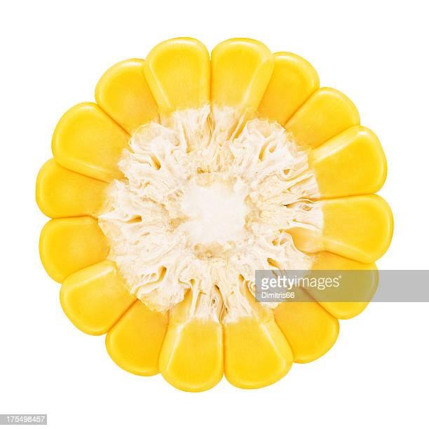 Corn Teile auf Weiß