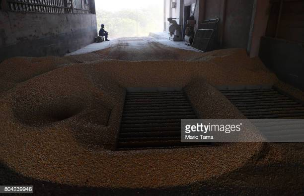 Corn sits in a silo at a cattle feed lot in the Amazon on June 28 2017 near Chupinguaia Rondonia state Brazil The confinement farm currently holds...