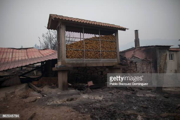 A corn store stands next to burnt houses in the village of Vila Nova near Vouzela on October 16 2017 in Viseu region Portugal At least 30 people have...