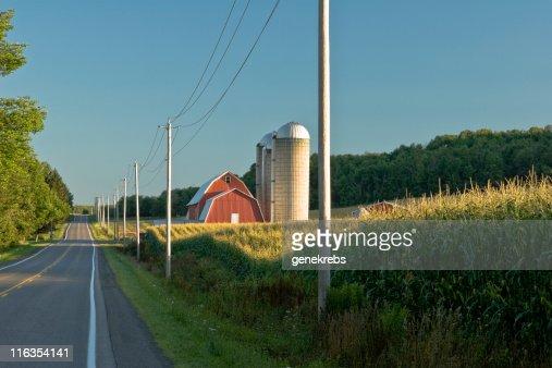 Cornfield and Red Barn at Dawn