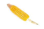 Corns cobs isolated