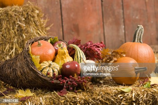 Cornucopia with winter squash and autumn leaves