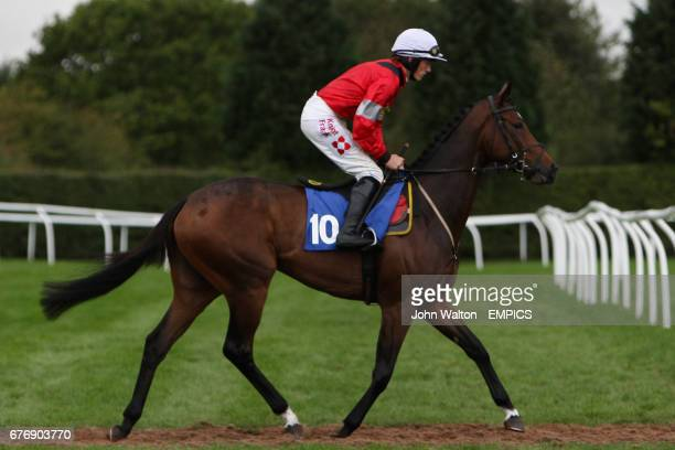 Corredor Sun ridden by Sam TwistonDavies going to post for the Betfair iPhone Android App Handicap Chase