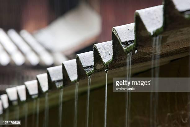 Amiante ondulé de la toiture sous la pluie.