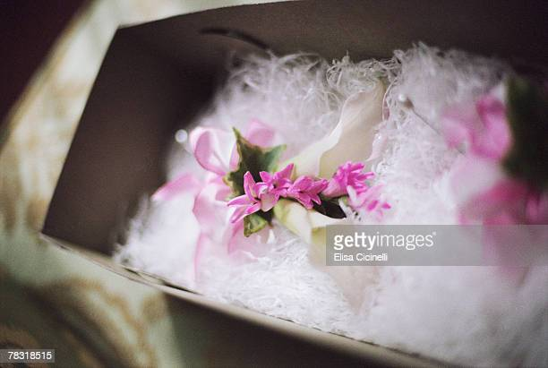 corsage stock photos and pictures  getty images, Beautiful flower
