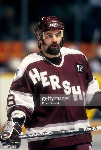 Cory Banika of the Hershey Bears skates on the ice during an AHL game in June 1997