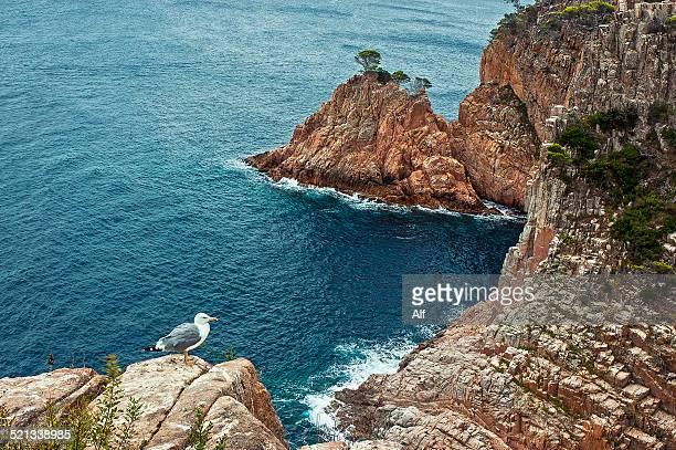 Costa Brava - Punta Munt