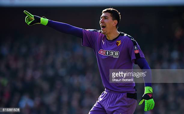 Costel Pantilimon of Watford points during the Emirates FA Cup sixth round match between Arsenal and Watford at Emirates Stadium on March 13 2016 in...
