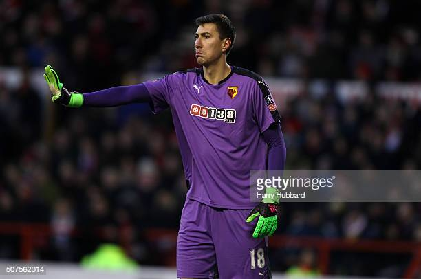 Costel Pantilimon of Watford reacts during the Emirates FA Cup Fourth Round match between Nottingham Forest and Watford at the City Ground on January...