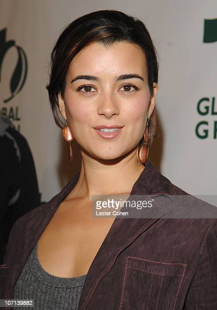 Cote de Pablo during Global Green USA 3rd Annual PreOscar Celebration to Benefit Global Warming Red Carpet at Avalon in Hollywood California United...
