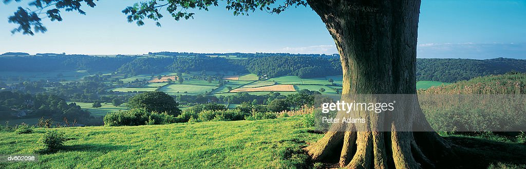 Cotswolds, England, UK : Stock Photo