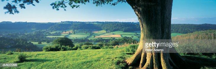Cotswolds, England, UK : Stockfoto