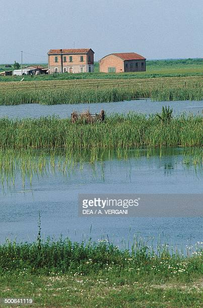 Cottage and irrigated fields in the Comacchio Valleys Po Delta Regional Park EmiliaRomagna Italy